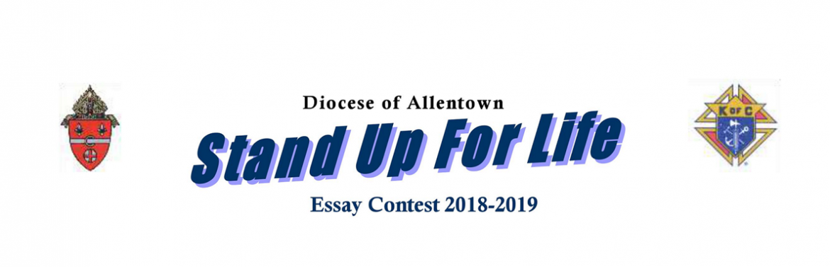 Dividends for life essay contest