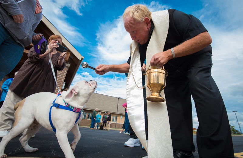 Pet blessing (CNS photo)